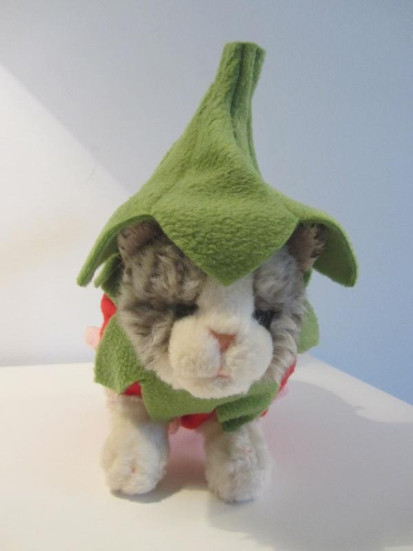 Katze – knuffeliges.de